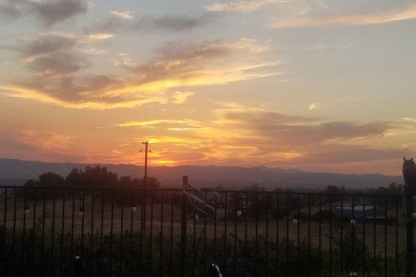 sunset #4-min